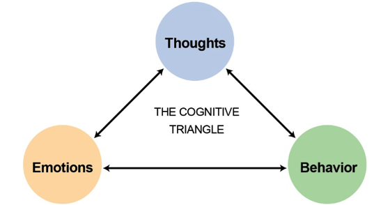 The cognitive triangle